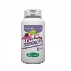 Echinacea integratore naturale che sviluppa le difese immunitarie