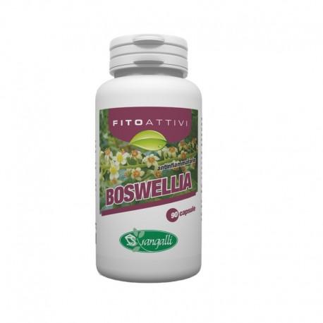 Boswelia integratore alimentare con proprietà antinfiammatorie