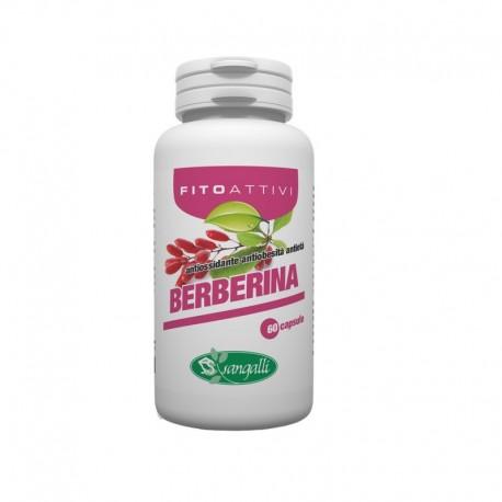 Berberina integratore naturale con azione antimicrobica e antibatterica