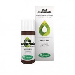 Eucalipto Olio Essenziale utile in caso di raffreddore, sinusite e cistite