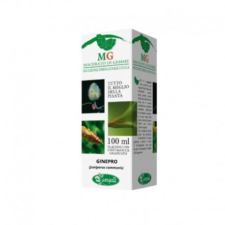 Gemmoderivato Ginepro integratore naturale con azione rigenerante e stimolante per reni e fegato