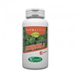 Rhodiola integratore antidepressivo naturale